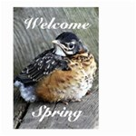spring bird - Large Garden Flag (Two Sides)
