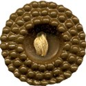 BUTTON1_secretgarden_mikki_livanos
