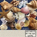 Sea Shells by the Sea Shore