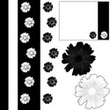 Cover Black and White with Flowers designs