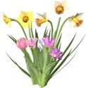 sp_easter_tulipgroup2
