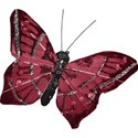 mliva-pink-butterfly1