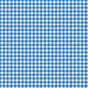 paper plaid blue
