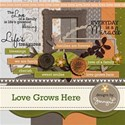 PREVIEW-love-grows