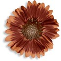 pamperedprincess_autumnblush_flower2 copy