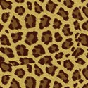 leopard background
