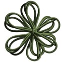stringflowergreen
