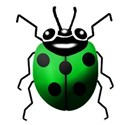 green lady bug