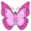 pink pink butterfly