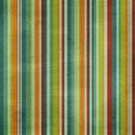cala_striped