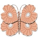 salmon pink butterfly