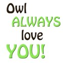 owl always love you 2