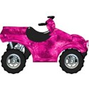 lisaminor_letsride_atv_b