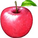 chey0kota_Apple Time_ele (17)