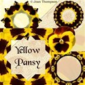 jThompson_yellowPansy_prev